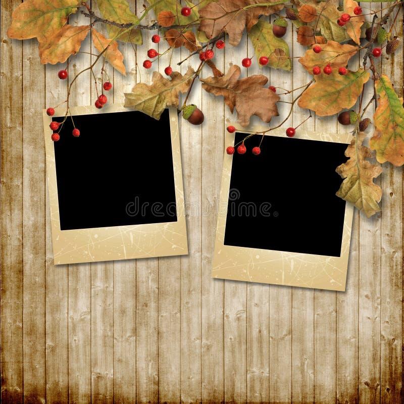 葡萄酒秋天背景用花揪和照片框架 向量例证