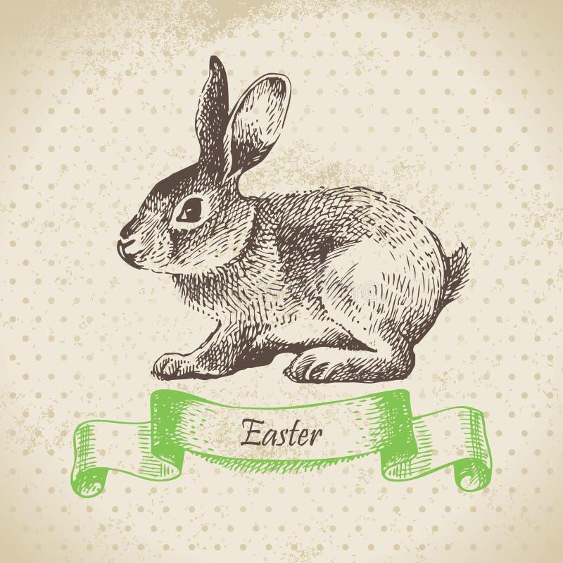 葡萄酒背景用复活节兔子 向量例证