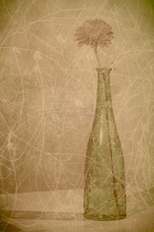 葡萄酒背景 库存照片