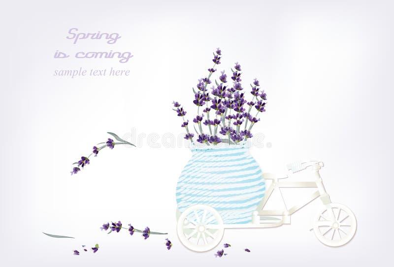 葡萄酒自行车微型玩具用淡紫色在篮子开花 传染媒介例证春天是以后的文本 向量例证