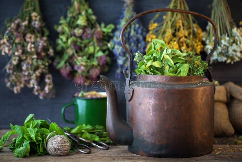 葡萄酒茶壶和和垂悬的医治草本 库存照片