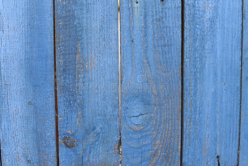 葡萄酒蓝色绘了与结的木背景纹理 蓝色抽象背景或五谷纹理拷贝空间 免版税库存照片