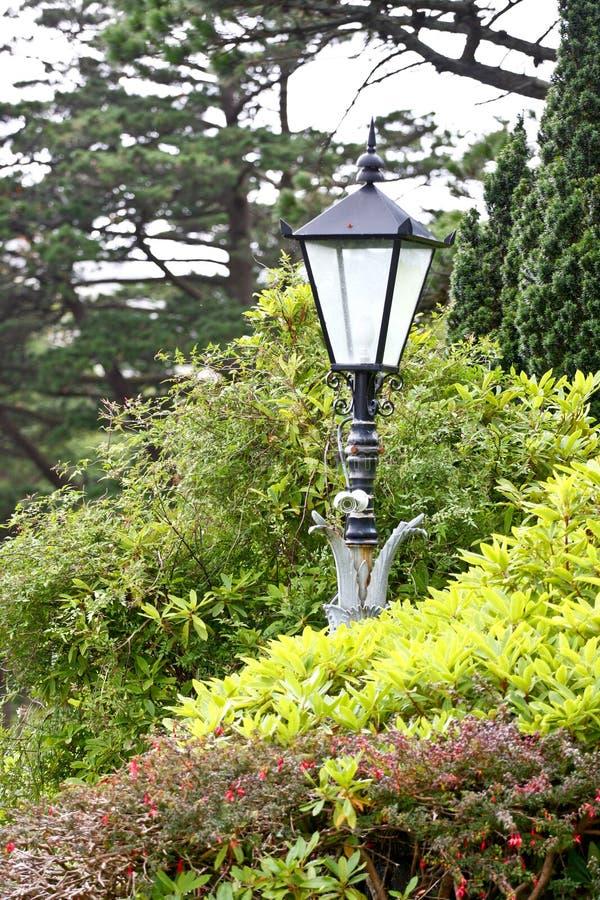 葡萄酒被称呼的路灯柱,爱尔兰 库存图片