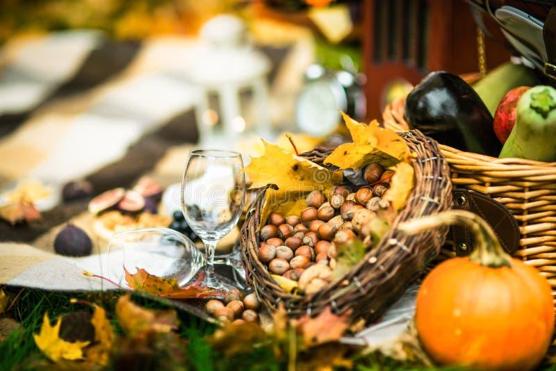 葡萄酒野餐集合 免版税库存照片