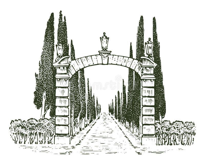 葡萄酒门 维多利亚女王时代的门或古老曲拱 对庭院或公园的入口在树背景中  皇族释放例证