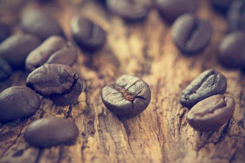 葡萄酒颜色口气,在老木的咖啡豆 免版税图库摄影