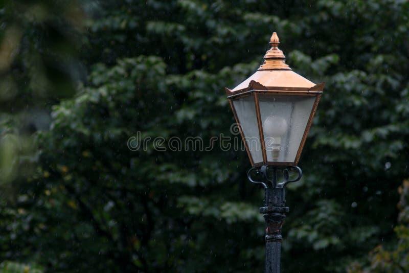 葡萄酒黄铜灯岗位在凤凰公园,都伯林,爱尔兰在一下雨天 免版税库存图片