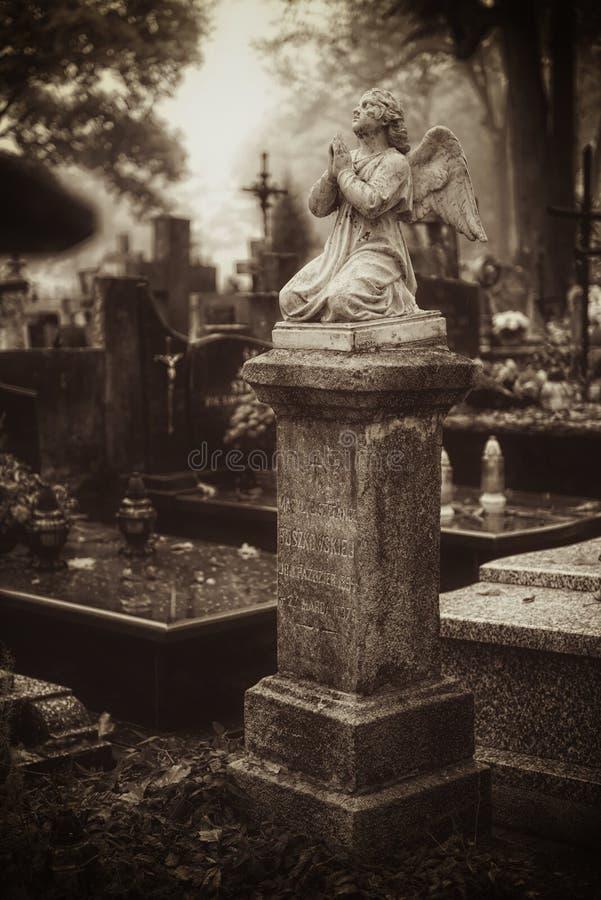 葡萄酒19世纪坟墓 库存照片