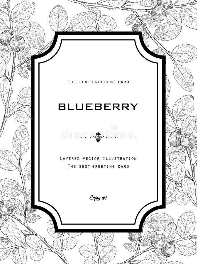 葡萄酒贺卡用与叶子的蓝莓 皇族释放例证