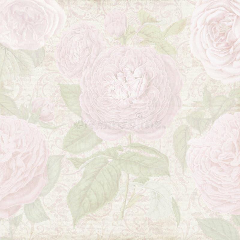 葡萄酒破旧的玫瑰色纸背景 库存例证