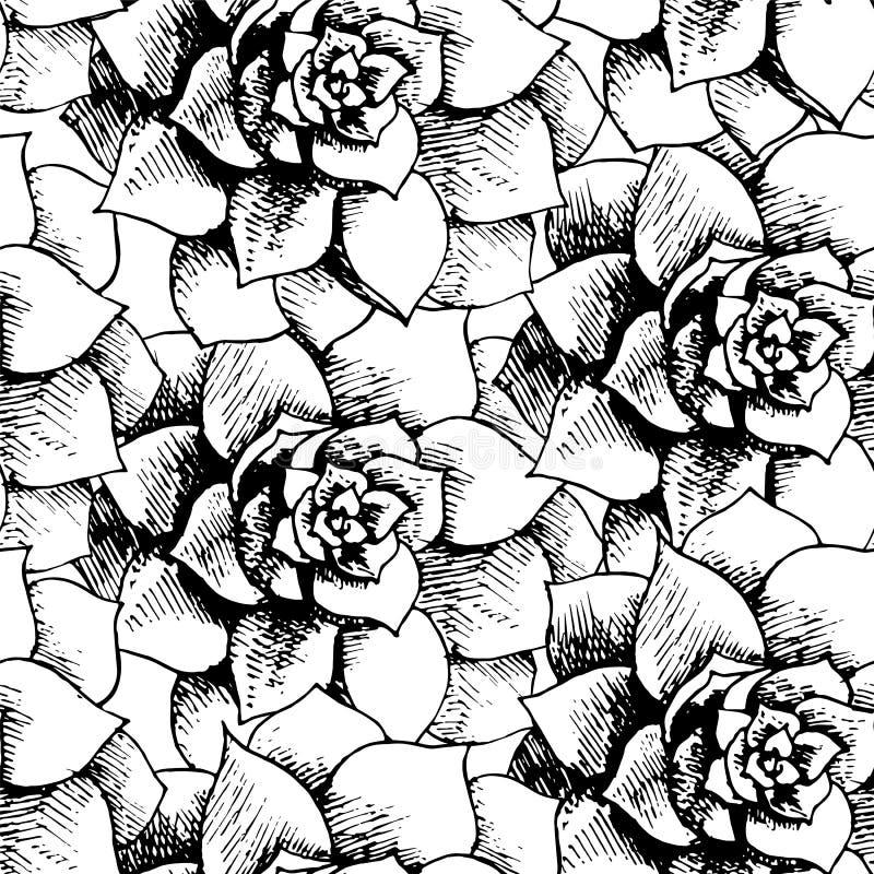 葡萄酒黑白花卉无缝的模式 向量例证