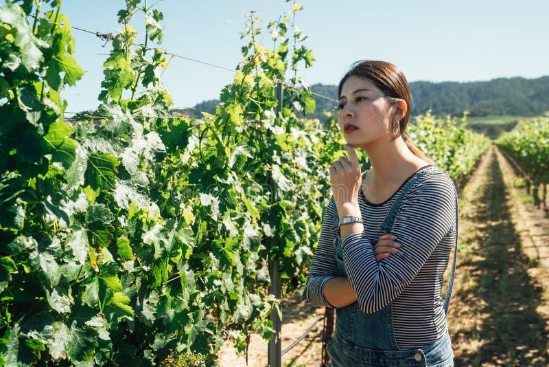 葡萄酿酒厂的主人农夫集中了 免版税库存图片