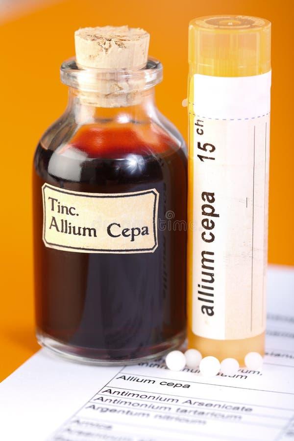 葱属Cepa工厂解压缩和同种疗法药片 库存图片