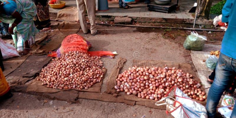 葱批发商店在印度村庄农夫市场上 库存图片