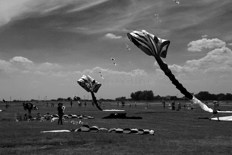 蒂米什瓦拉,罗马尼亚06 01 20187只五颜六色的风筝填装天空 黑白射击 库存照片