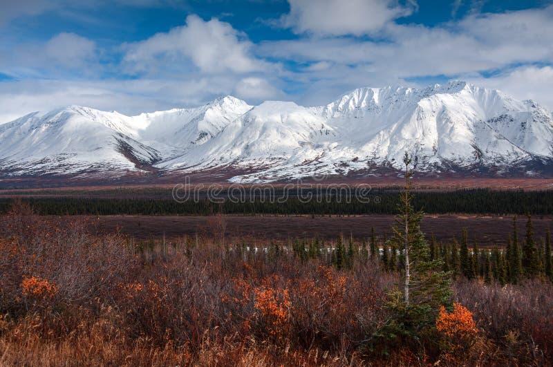 蒂纳里驱动2,蒂纳里国立公园,阿拉斯加,美国 库存照片