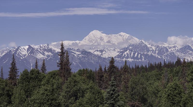 蒂纳里麦金利山在阿拉斯加在一个罕见的清楚的夏日 免版税图库摄影
