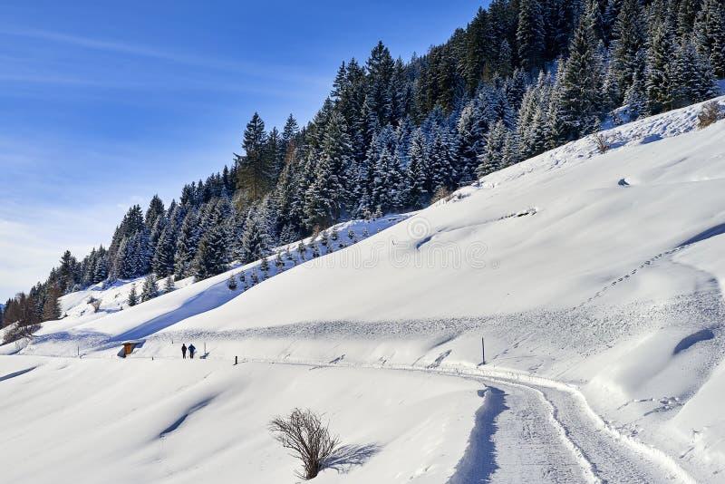 蒂罗尔阿尔卑斯冬天风景:积雪的小山倾斜、乡下路和两个人走 免版税库存图片