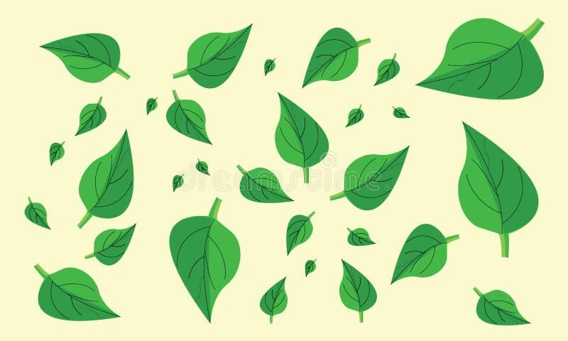 蒋酱之叶叶子 向量例证