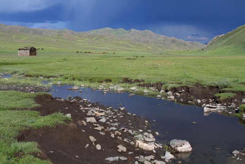 蒙古干草原的河 图库摄影