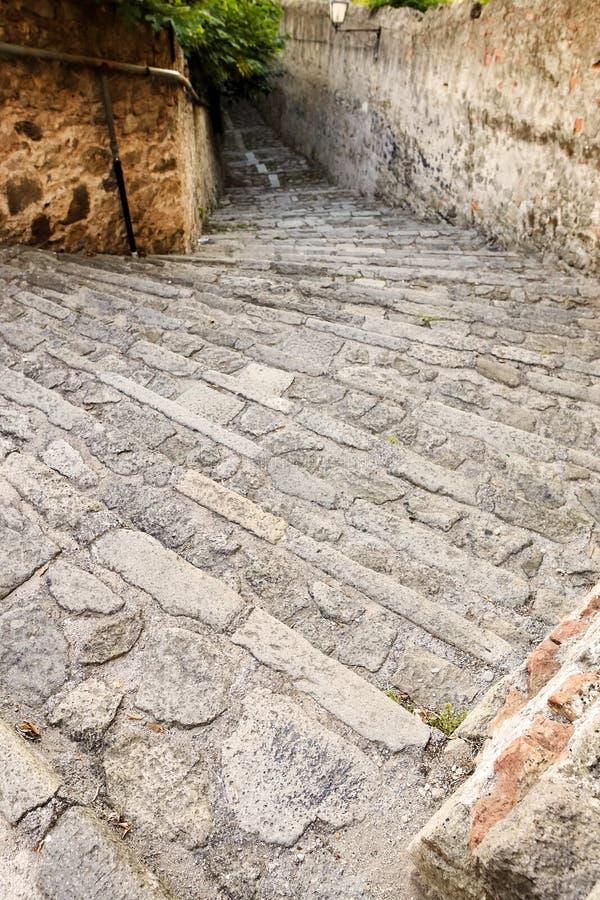 蒙塞利切,意大利- 2017年7月13日:别墅Mocenigo娜妮楼梯在蒙塞利切 免版税库存照片