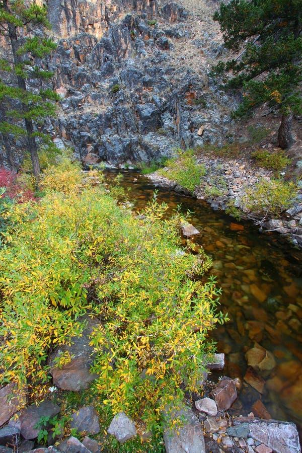 蒙大拿小河和岩石峭壁 免版税库存照片