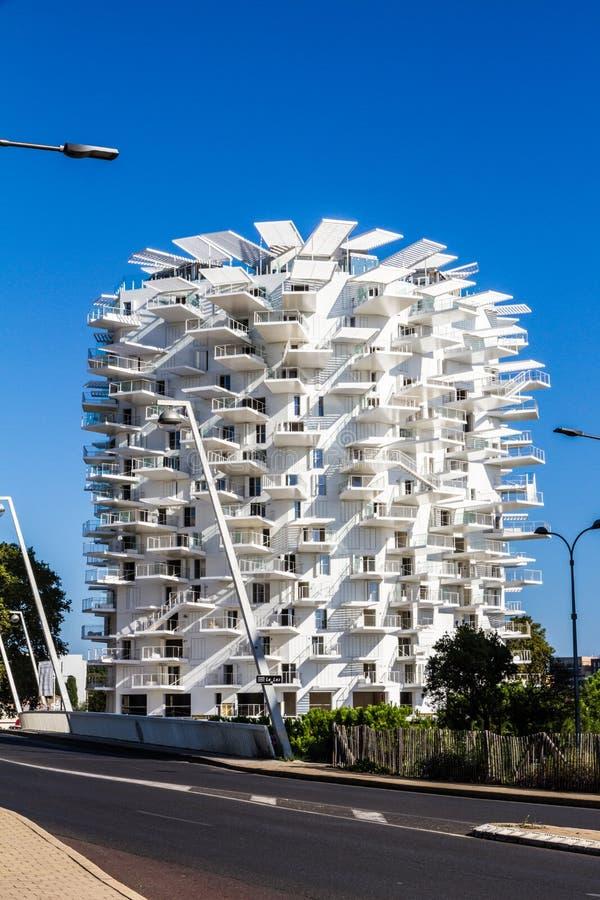蒙彼利埃,法国 L'Arbre布朗在一个美好的晴朗的夏天下午的白色树大厦 免版税库存图片
