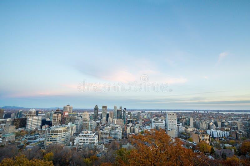 蒙特利尔地平线,与从Mont皇家小山和CBD企业摩天大楼的采取的偶象大厦街市 库存照片