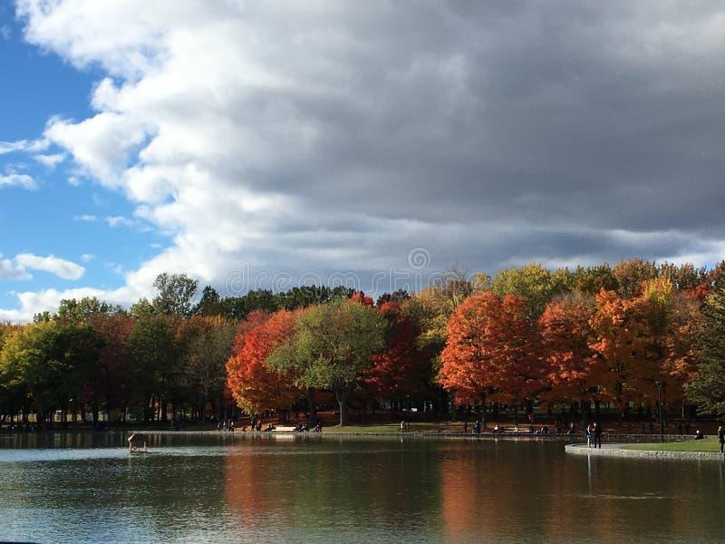 蒙特利尔皇家山在秋天1的公园视图 库存图片