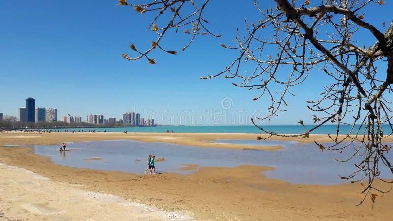 蒙特罗斯海滩在一好日子在芝加哥 免版税库存图片