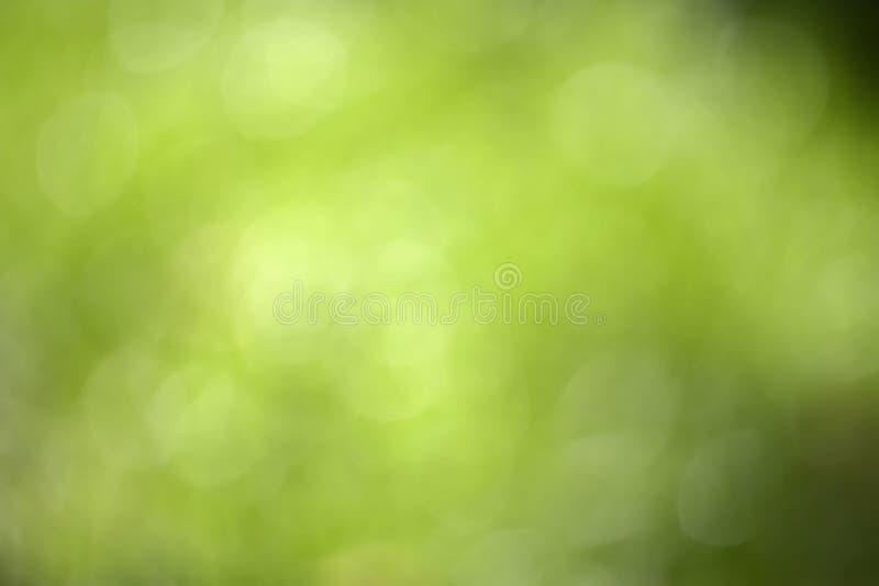 蒙蔽蓝绿色绿色垂直 库存照片