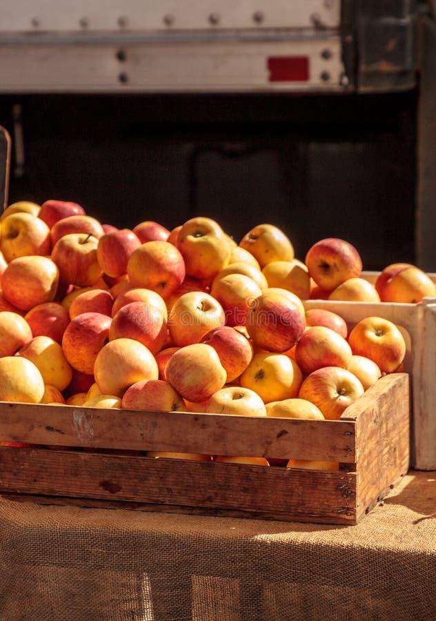蒲式耳在一个条板箱的黄色苹果在农夫市场上 免版税库存照片