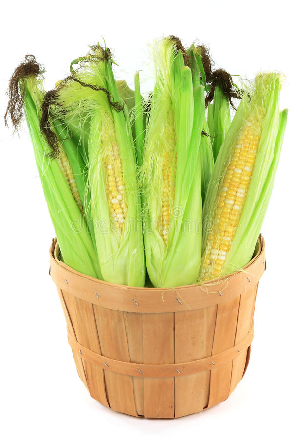 蒲式耳玉米 库存照片