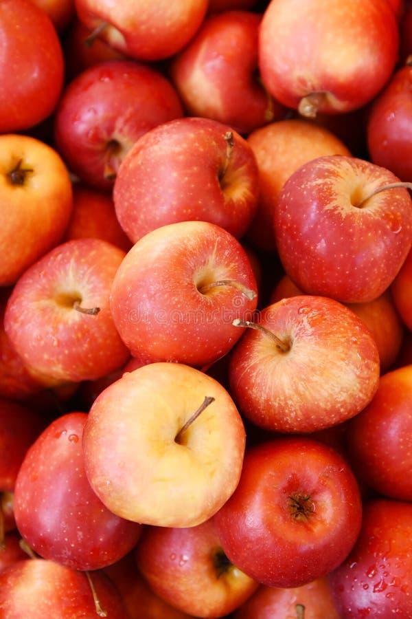 蒲式耳红色苹果 免版税库存照片