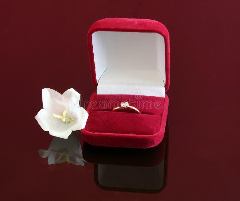 蒴红色环形婚礼酒 免版税库存照片