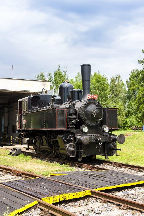 蒸汽机车在集中处,捷克 免版税图库摄影