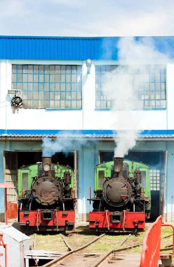 蒸汽机车在集中处,科斯托拉茨,塞尔维亚 图库摄影