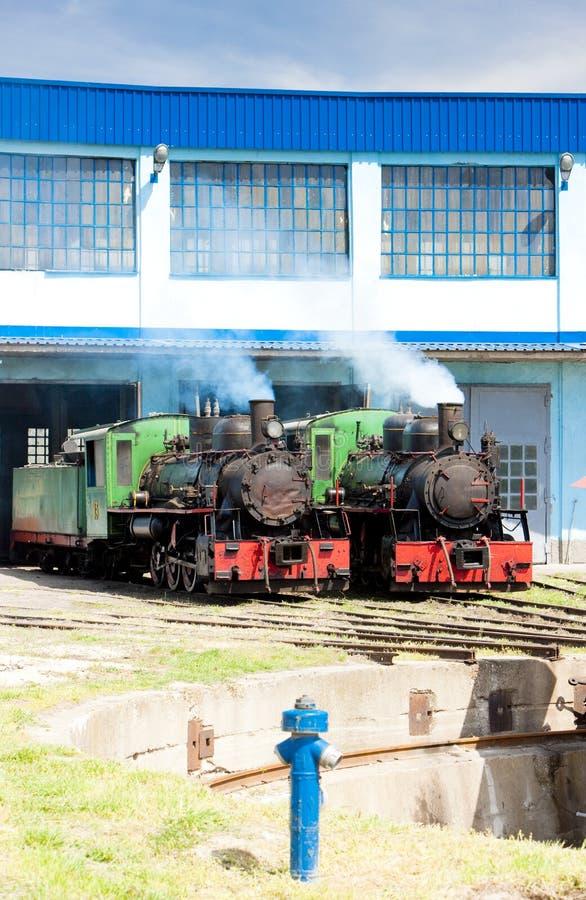 蒸汽机车在集中处,科斯托拉茨,塞尔维亚 免版税库存图片