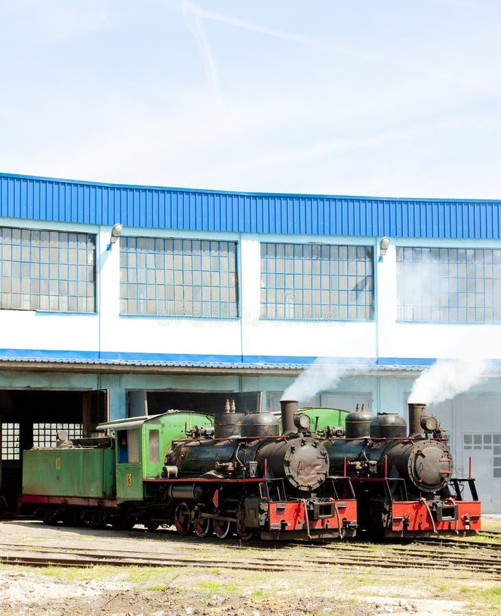 蒸汽机车在集中处,科斯托拉茨,塞尔维亚 库存照片