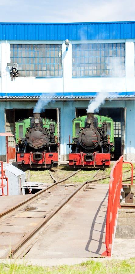 蒸汽机车在集中处,科斯托拉茨,塞尔维亚 免版税库存照片