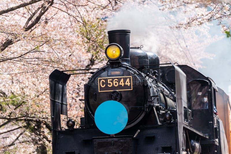 蒸汽机车火车在日本 免版税图库摄影