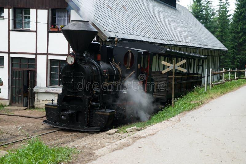 蒸汽火车 库存图片