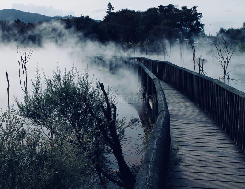 蒸汽的温泉公园道路,罗托路亚新西兰 免版税库存图片