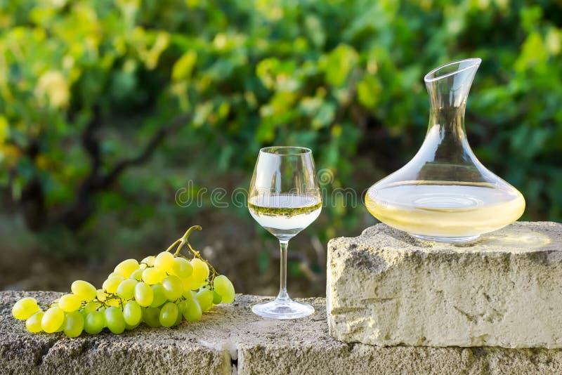 蒸馏瓶、一杯白酒和葡萄,户外,自然 免版税库存照片
