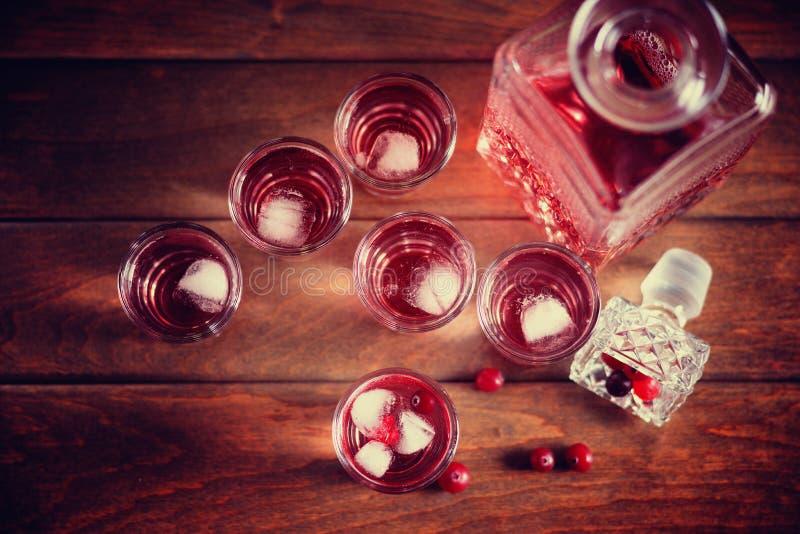 蒸馏瓶和射击用自然蔓越桔和伏特加酒 库存照片