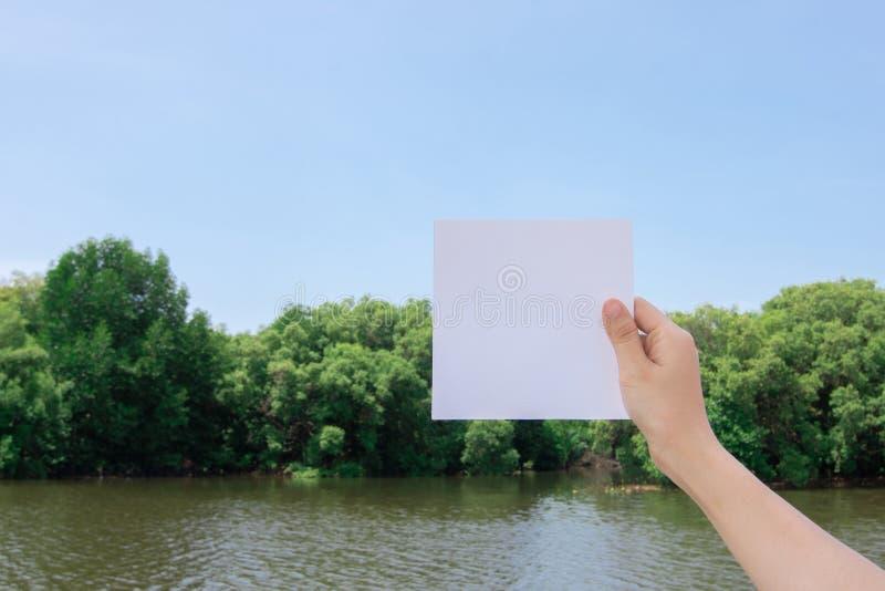 蓝天云背景红树林和河流上手持白纸的妇女 免版税库存照片