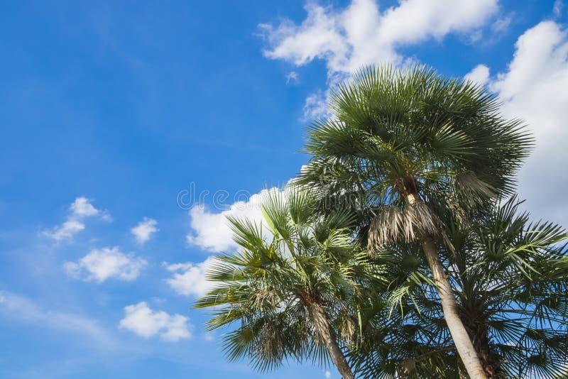 蓝天有云彩背景 库存图片