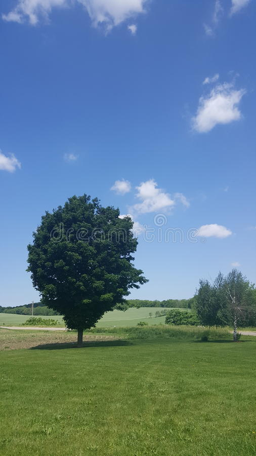 蓝天美好的夏天乐趣 免版税库存照片
