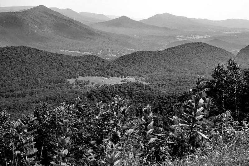 蓝岭山脉和鹅小河谷的抽象看法 库存照片
