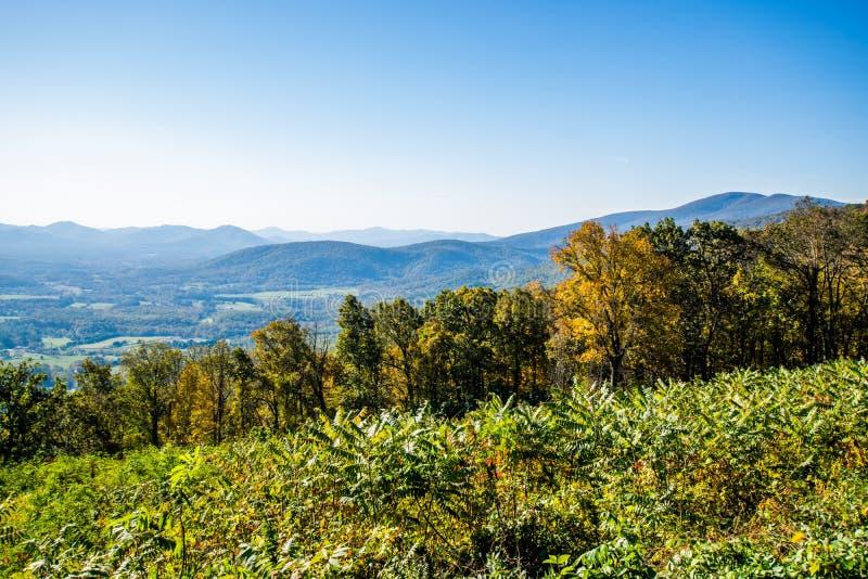 蓝岭山脉的地平线在Shenandoah Na的弗吉尼亚 图库摄影